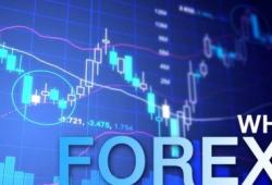 Apa itu Bisnis Forex?