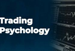 6 Manajemen Psikologi Trading Forex